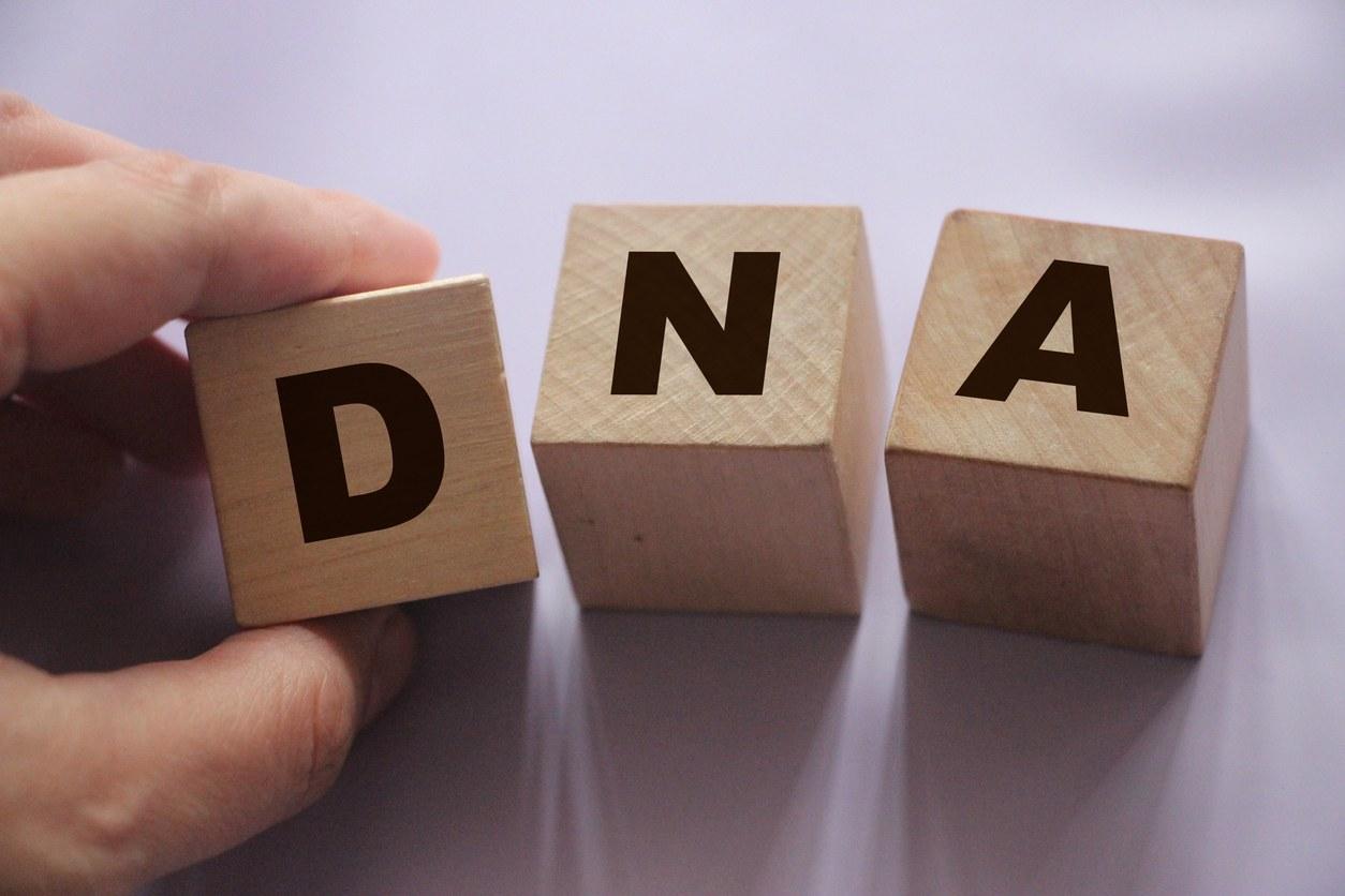 Glossaire généalogique : Explication de termes courants de l'ADN